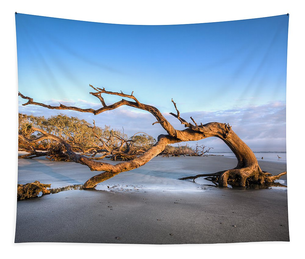 Ocean Tapestry featuring the photograph Oaks On Driftwood Beach by Debra and Dave Vanderlaan