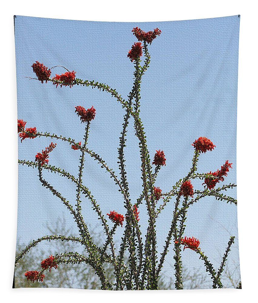 Ocatillo With Red Blossoms Tapestry featuring the photograph Ocatillo With Red Blossoms by Tom Janca