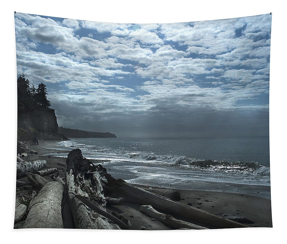 Sandy Tapestry featuring the photograph Ocean Beach Pacific Northwest by Yulia Kazansky