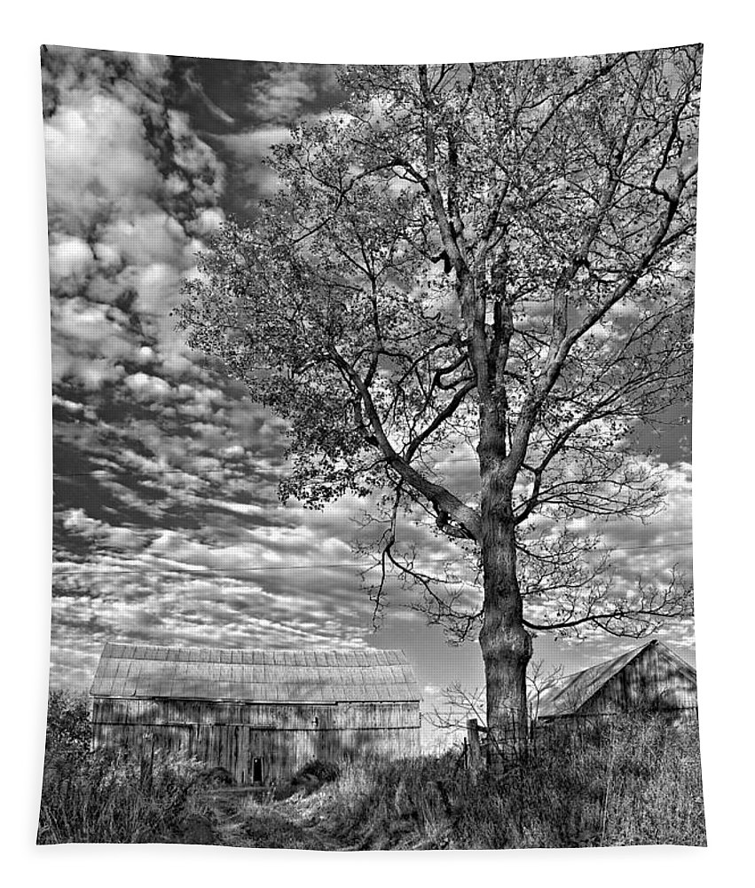 Landscape Tapestry featuring the photograph October Evening Monochrome by Steve Harrington
