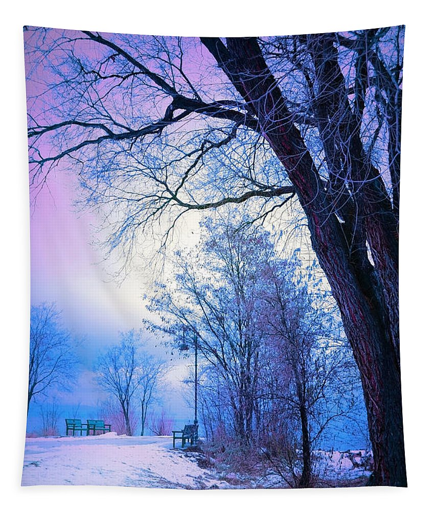 Tree Tapestry featuring the photograph Of Dreams And Winter by Tara Turner