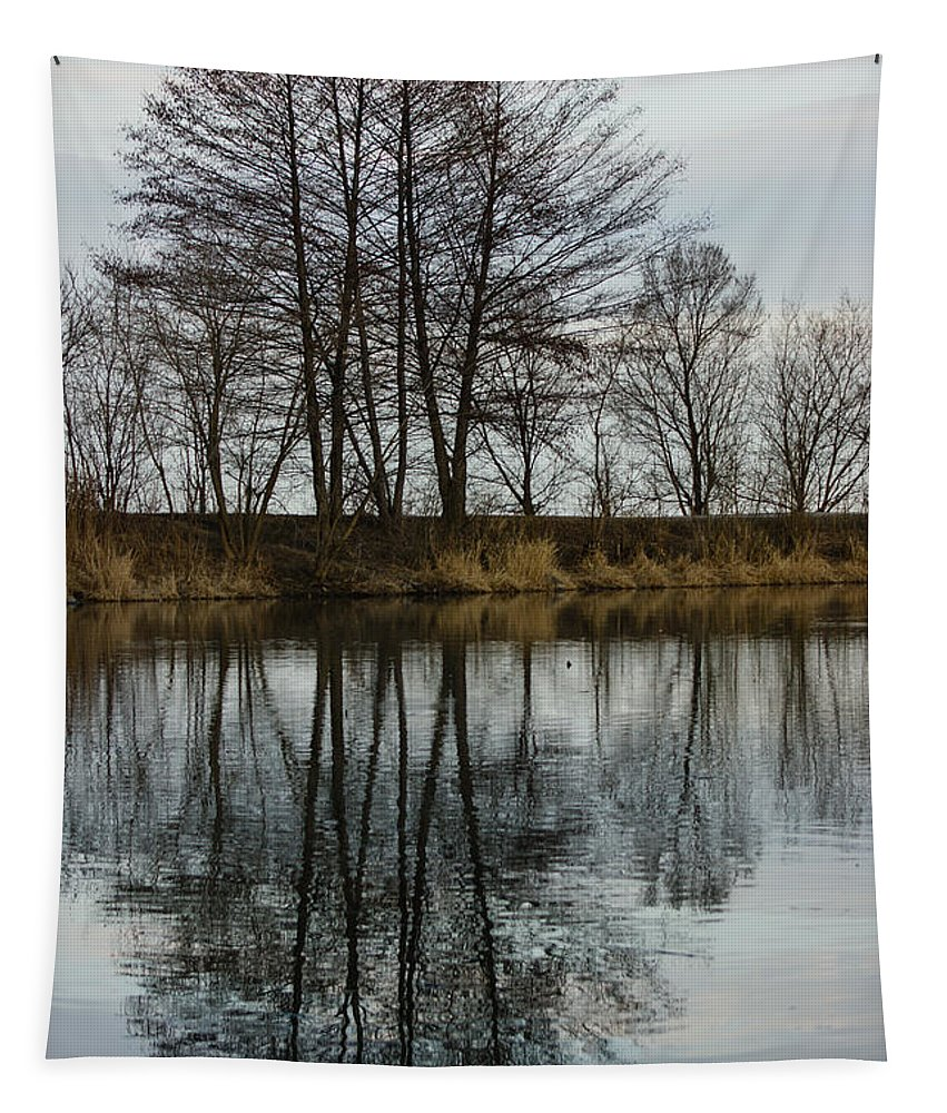 Reflections Tapestry featuring the photograph Of Mirrors And Trees by Georgia Mizuleva