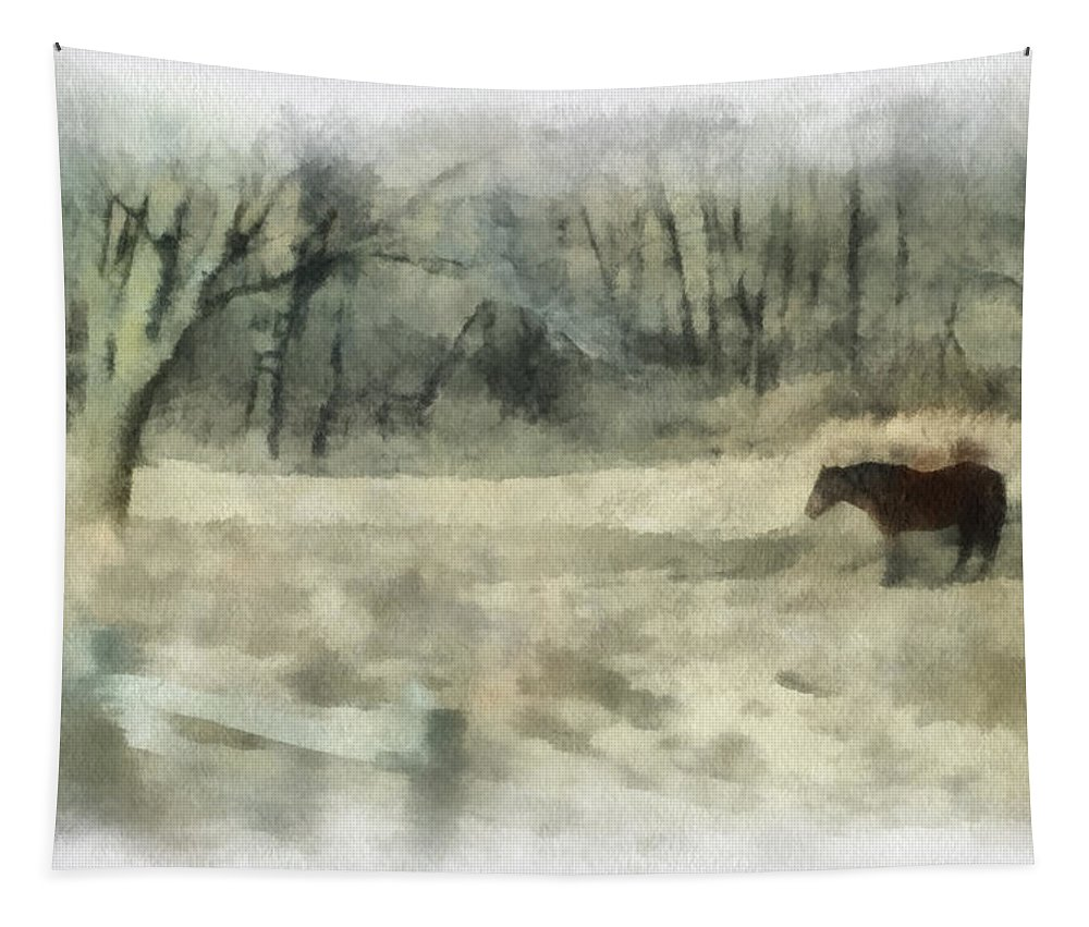 Horse Tapestry featuring the photograph Oklahoma Field Horse During Winter Photo Art 01 by Thomas Woolworth
