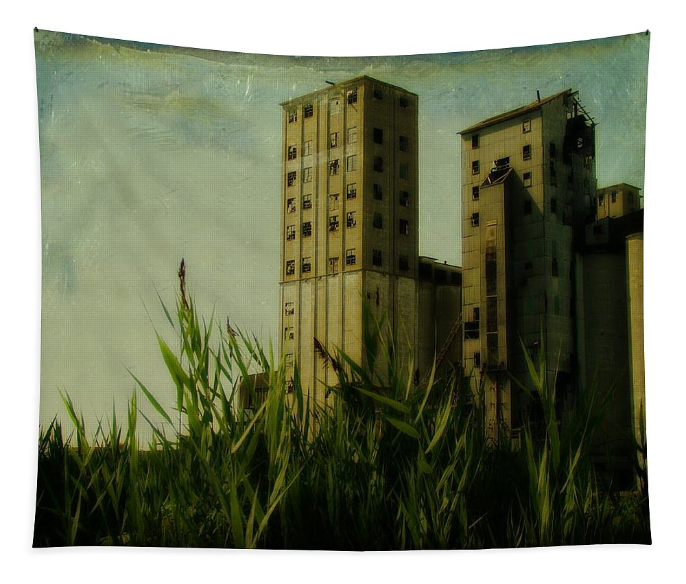 Old Buildings Tapestry featuring the photograph Old Buffalo Grain Elevators by Gothicrow Images