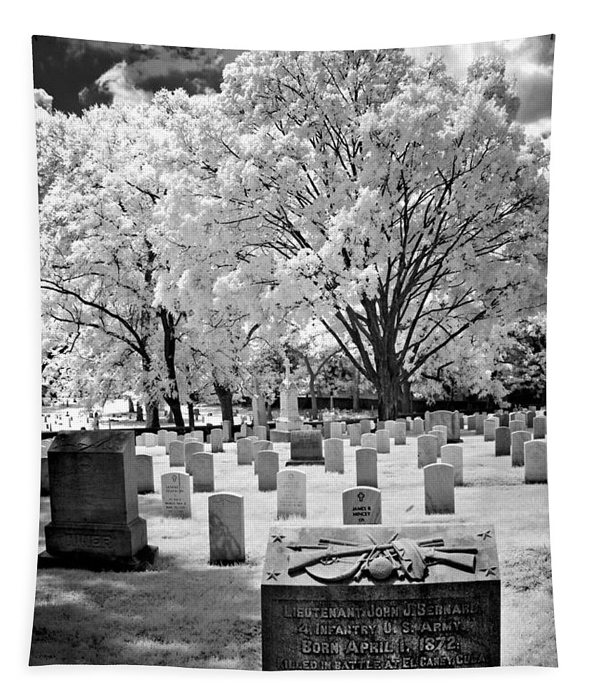 B&w Tapestry featuring the photograph Old Gray - 135 by Paul W Faust - Impressions of Light