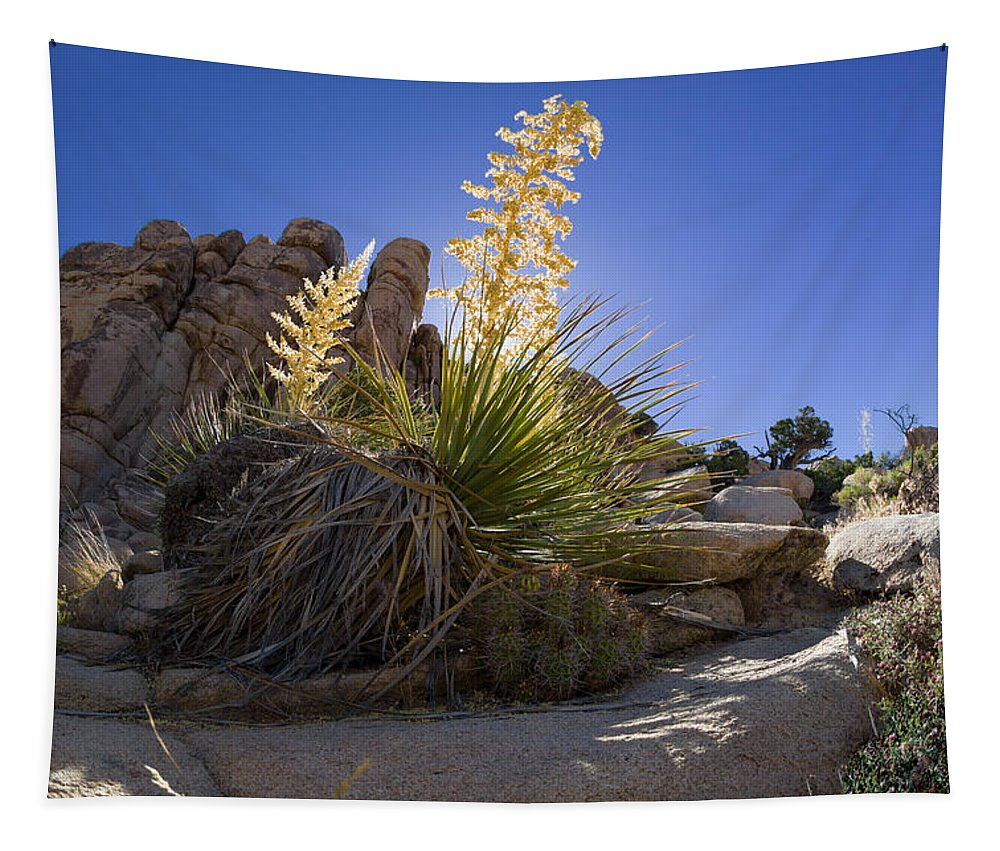 Flower Tapestry featuring the photograph On A Ledge by Scott Campbell