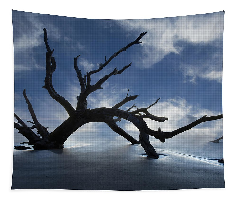Clouds Tapestry featuring the photograph On a MIsty Morning by Debra and Dave Vanderlaan