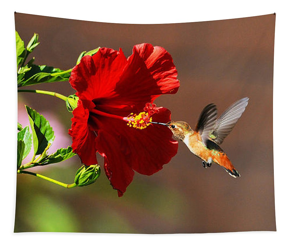 Hummers Tapestry featuring the photograph On Target by Lynn Bauer