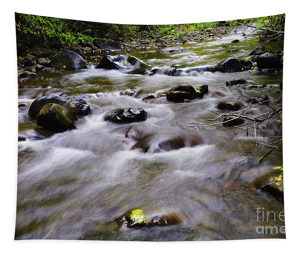 Water Tapestry featuring the photograph One Stranded Leaf Hanging On by Jeff Swan