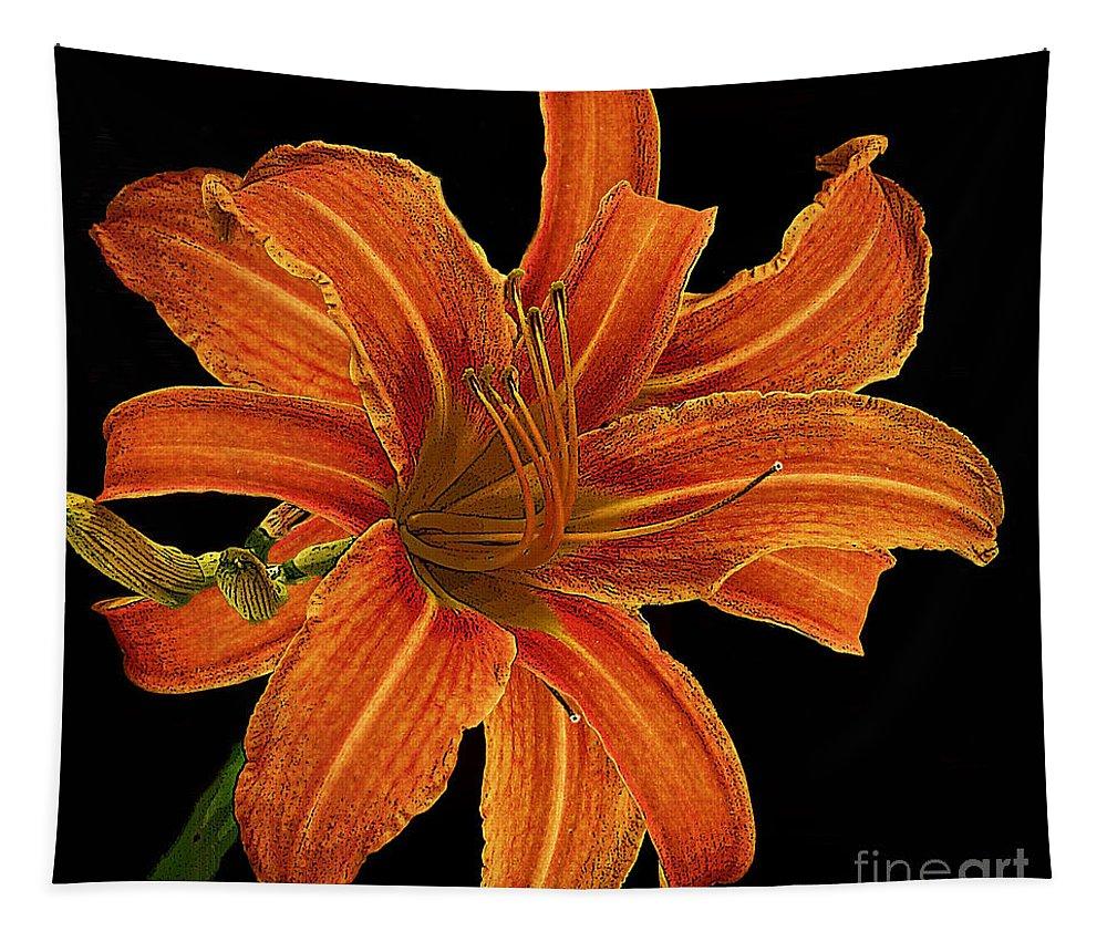 Orange Tapestry featuring the photograph Orange by Ben Yassa