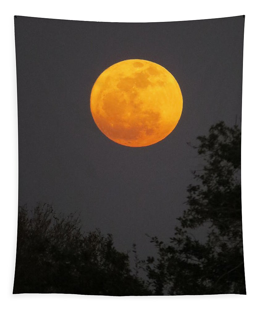 Orange Moon Tapestry featuring the photograph Orange Moon by Zina Stromberg