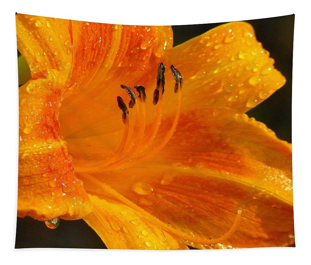 Orange Tapestry featuring the photograph Orange Rain by Karen Wiles