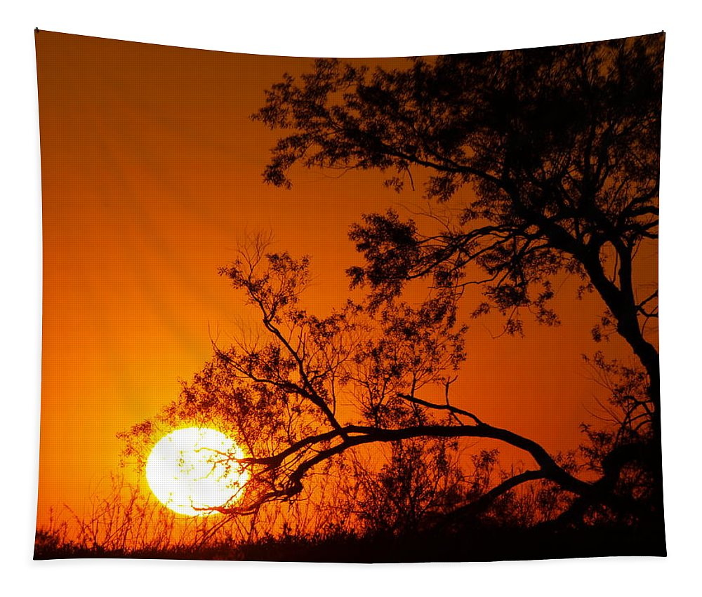 Nature Tapestry featuring the photograph Orange Silhouette by James Peterson