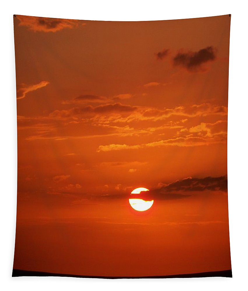 Tampa Tapestry featuring the photograph Orange Sun by Katie Beougher