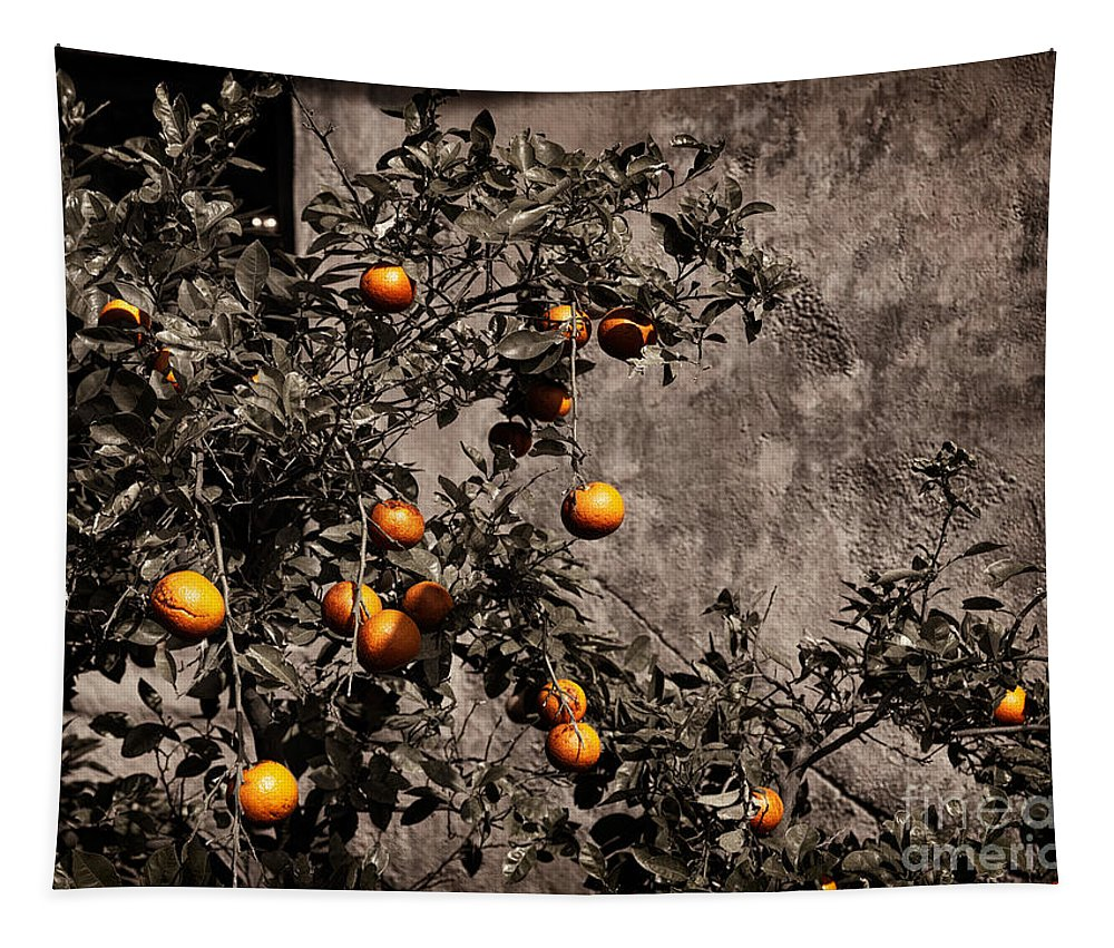 Orange Tapestry featuring the photograph Orange Tree On Rustic Background by Oleksiy Maksymenko