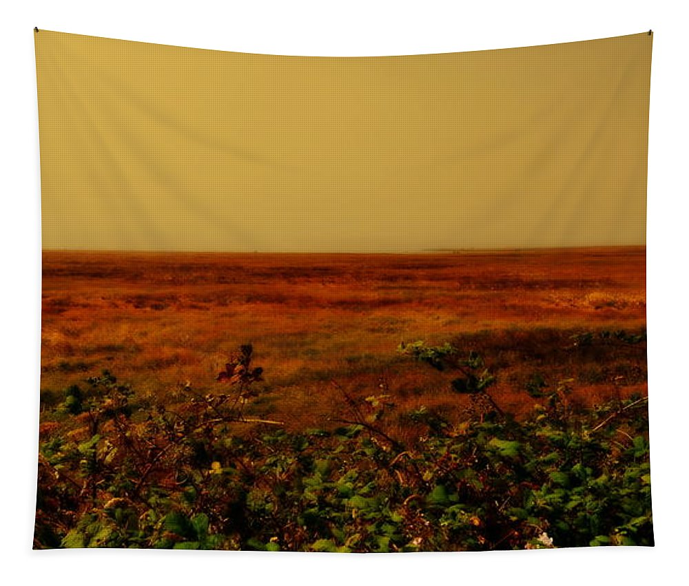 Shore Tapestry featuring the photograph Oregon Coastline Ll by Michelle Calkins