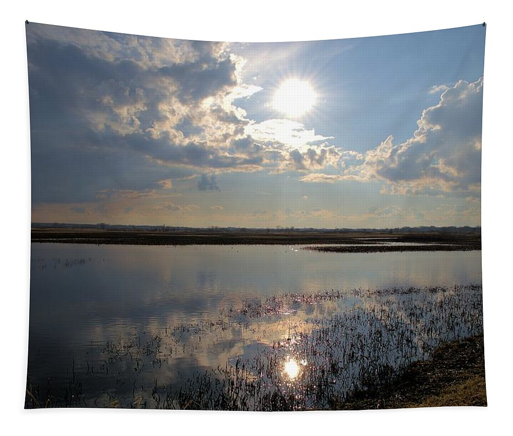 Star Tapestry featuring the photograph Our Star by Bonfire Photography