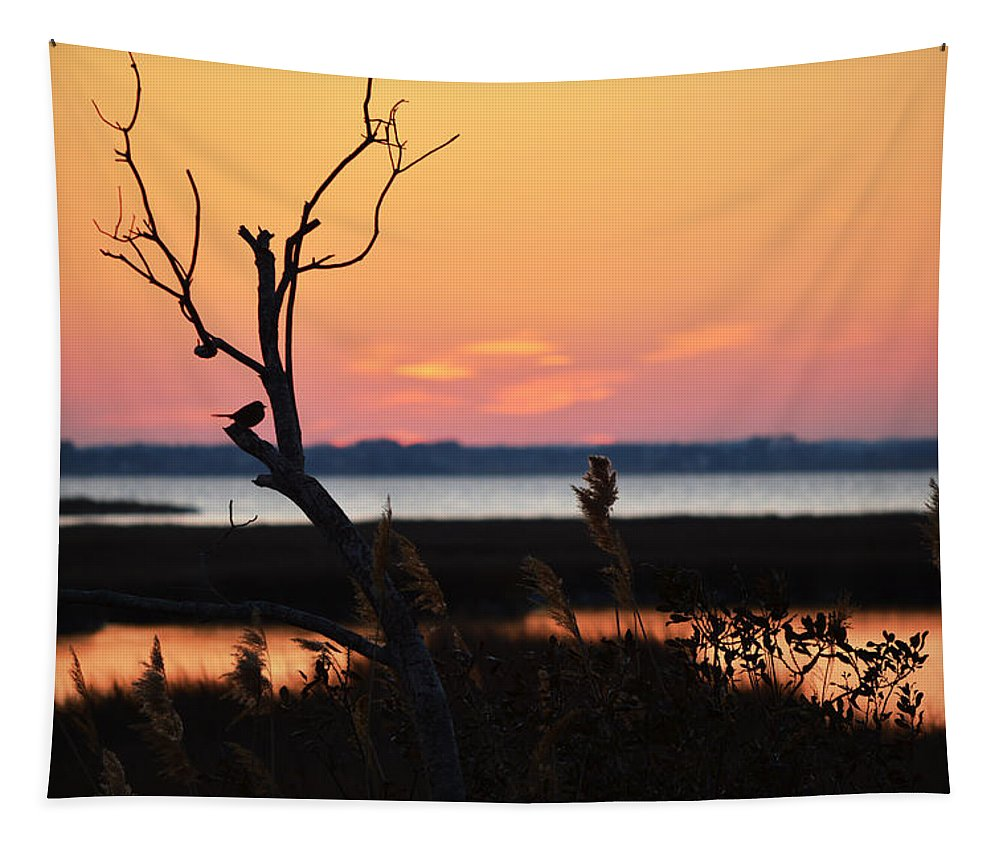 Bird On A Limb Tapestry featuring the photograph Ocean City Sunset Out On A Limb by Bill Swartwout Fine Art Photography