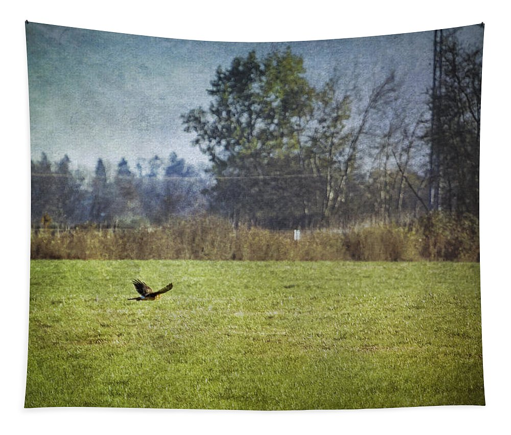Owl Tapestry featuring the photograph Owl Hunting No. 2 by Belinda Greb