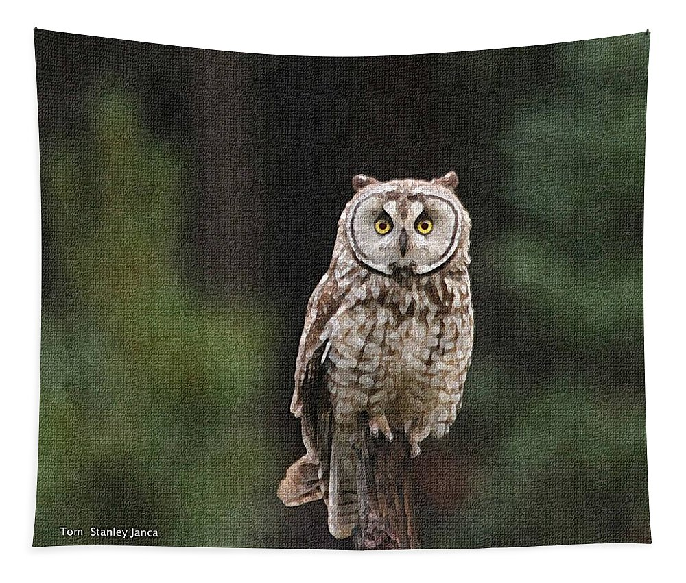 Owl Tapestry featuring the photograph Owl In The Forest Visits by Tom Janca