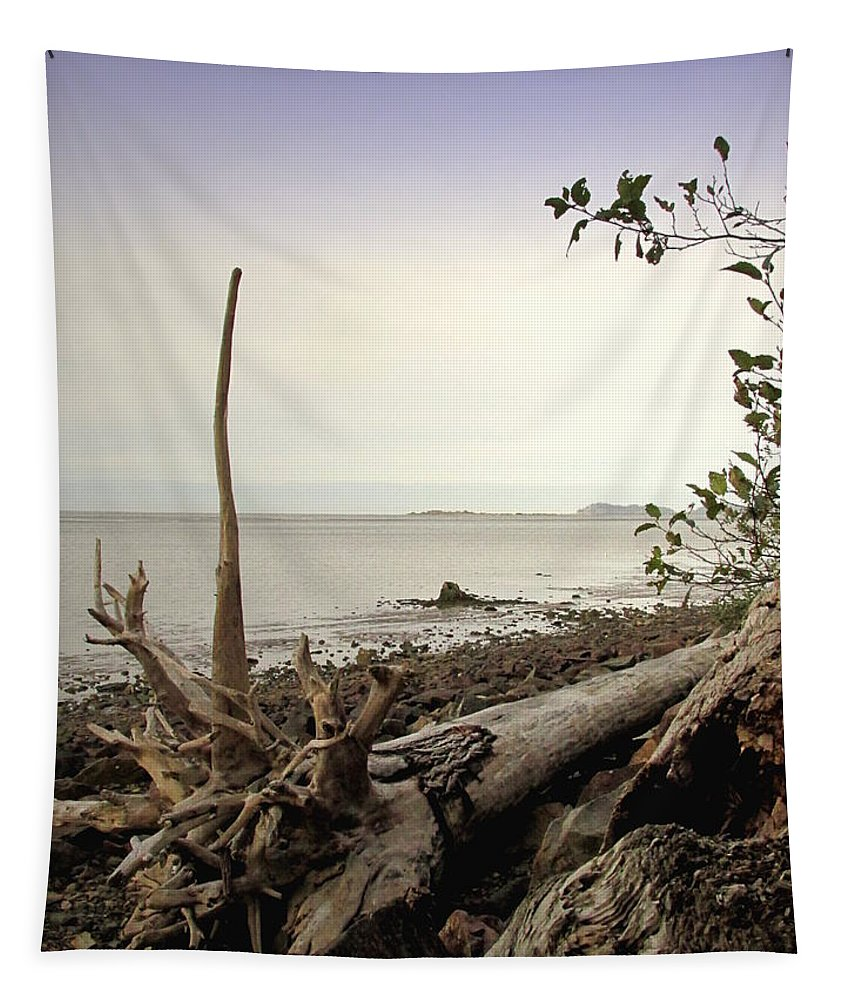 Driftwood Tapestry featuring the photograph Pacific Vista by Joyce Dickens