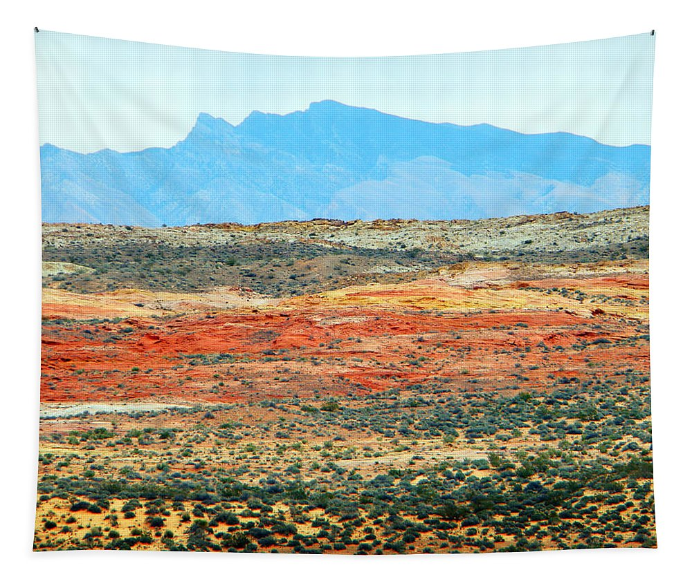 Valley Of Fire Tapestry featuring the photograph Painted Desert by Frank Wilson