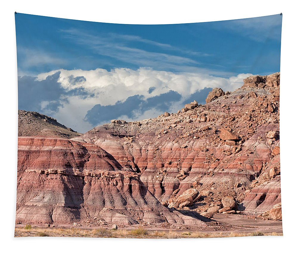 Banded Tapestry featuring the photograph Painted Hills Of The Upper Jurrasic by Kathleen Bishop