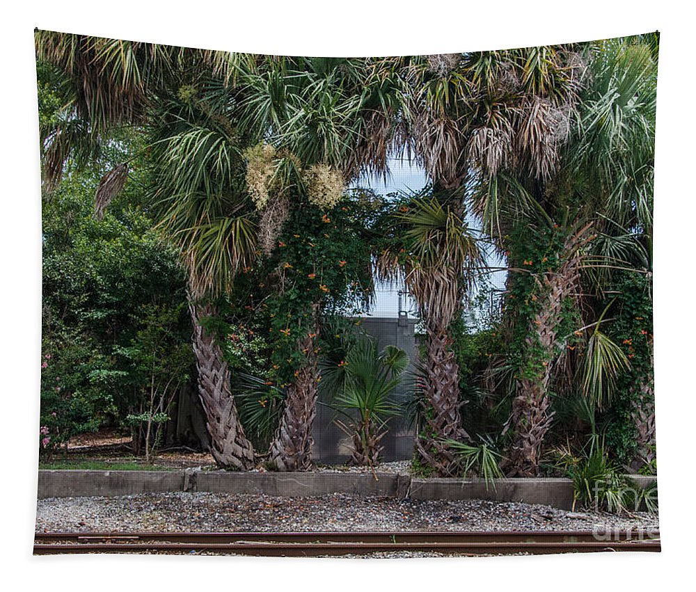 Train Tracks Tapestry featuring the photograph Palmetto Crossing by Dale Powell