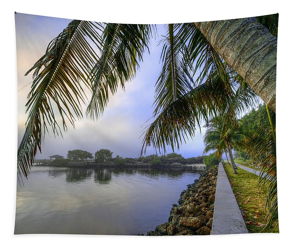 Clouds Tapestry featuring the photograph Palms Over The Waterway by Debra and Dave Vanderlaan