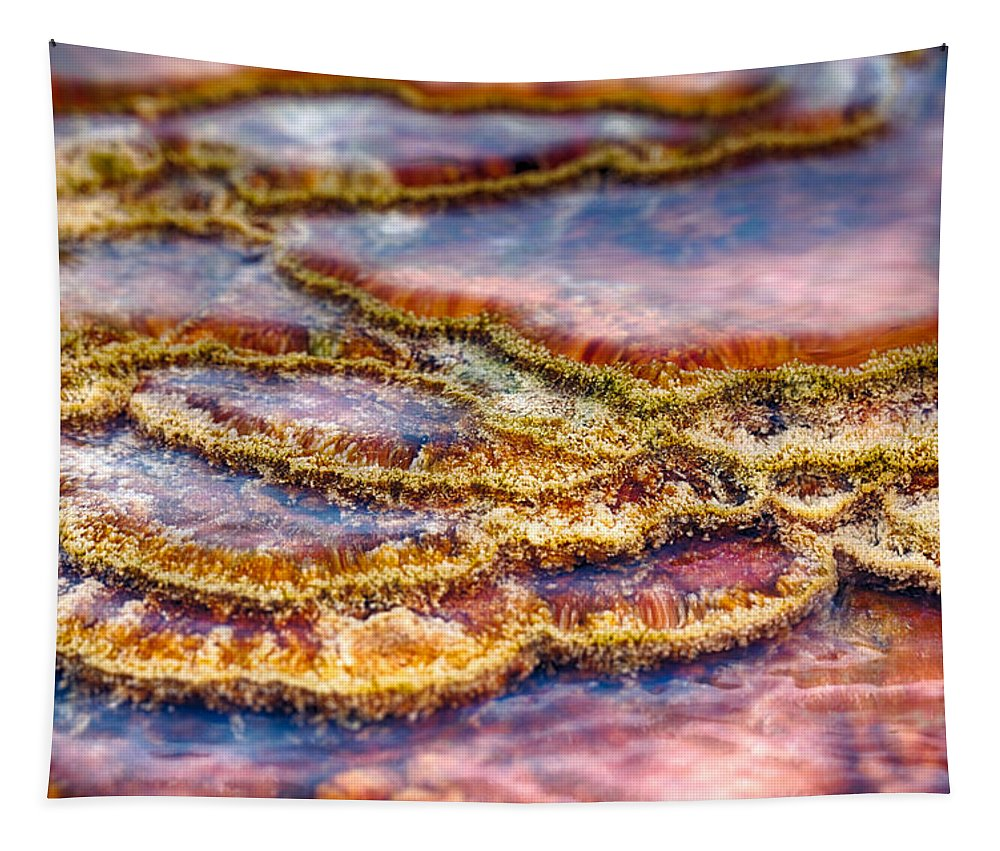 Hot Springs Tapestry featuring the photograph Pancakes Hot Springs by Scott Campbell