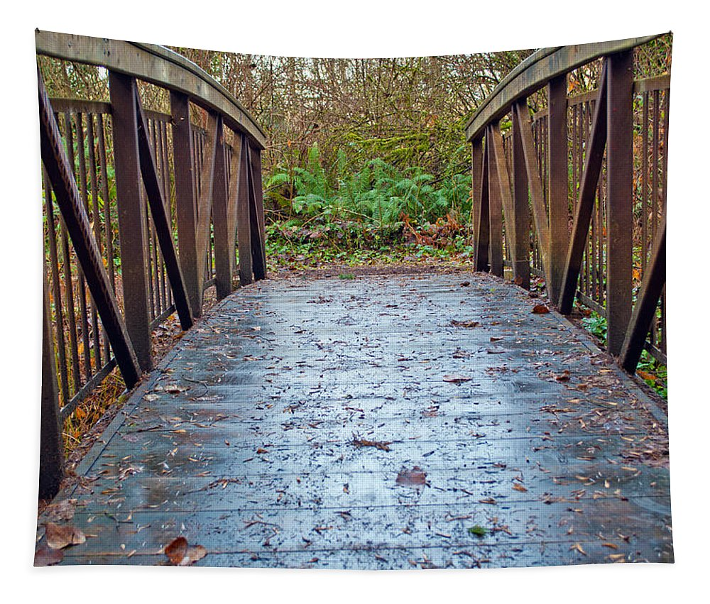 Handrails Tapestry featuring the photograph Park Bridge by Tikvah's Hope