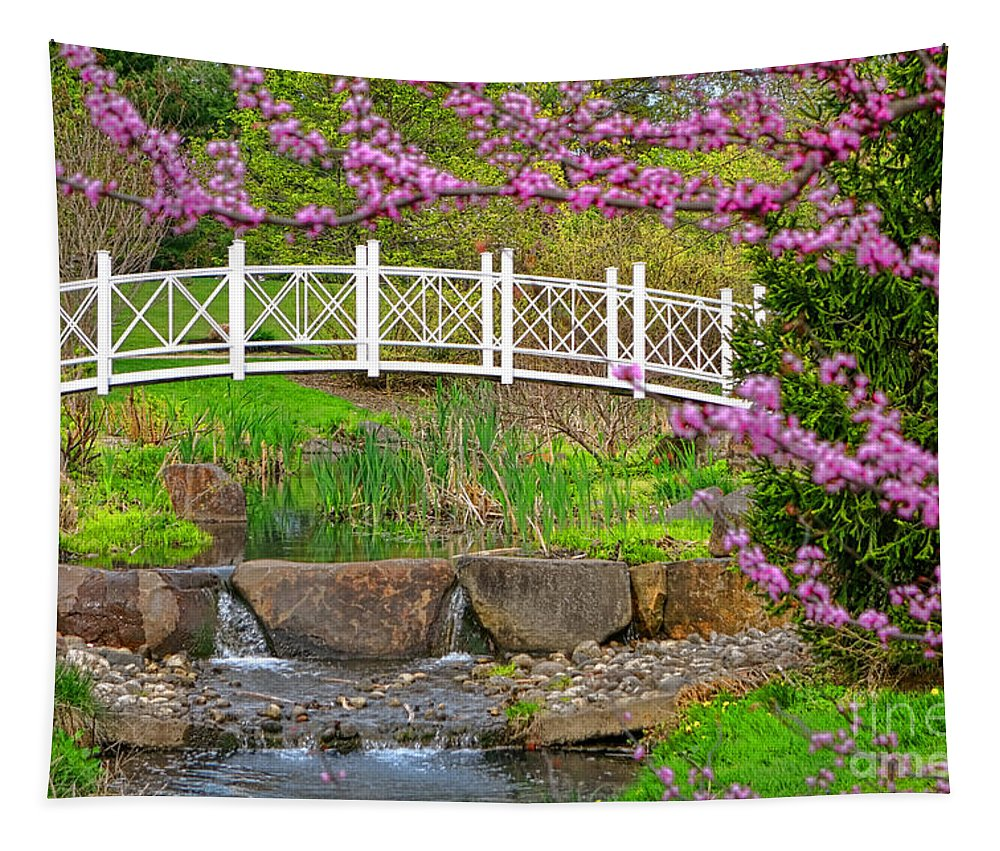 Sayen Tapestry featuring the photograph Passerelle by Olivier Le Queinec