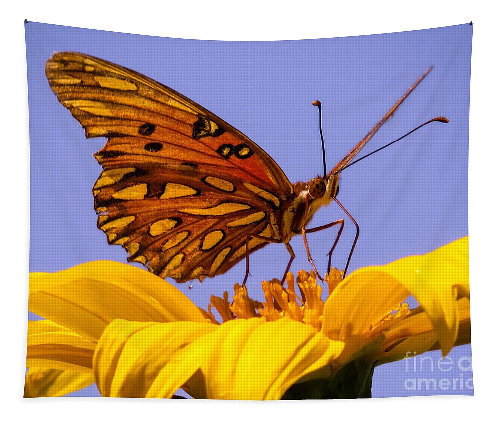 Butterfly Tapestry featuring the photograph Passion Butterfly On The Mexican Sunflower by Zina Stromberg
