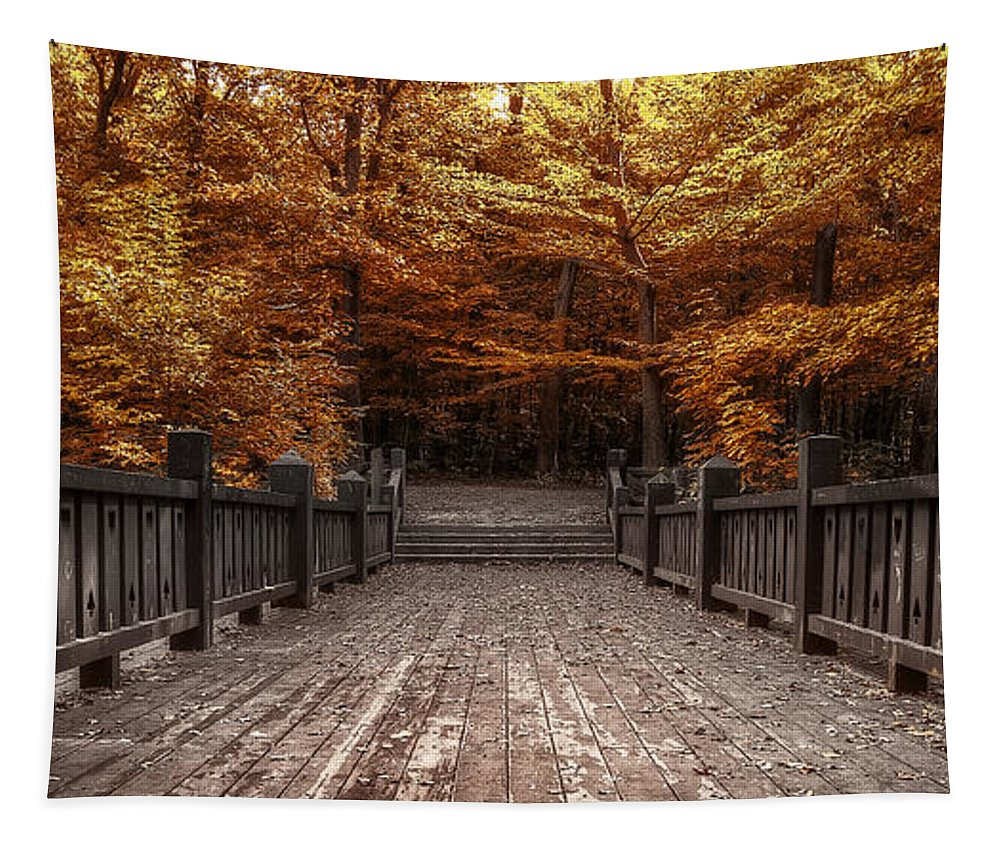 Landscape Tapestry featuring the photograph Path To The Wild Wood by Scott Norris