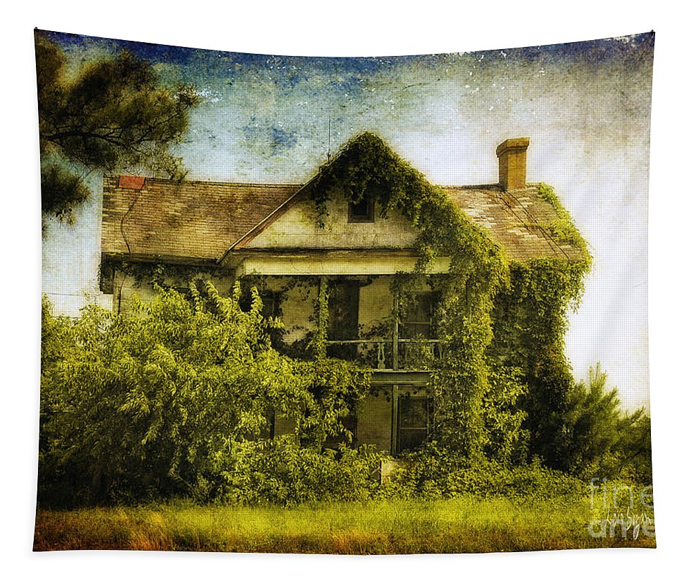 House Tapestry featuring the photograph Patiently Waiting by Lois Bryan