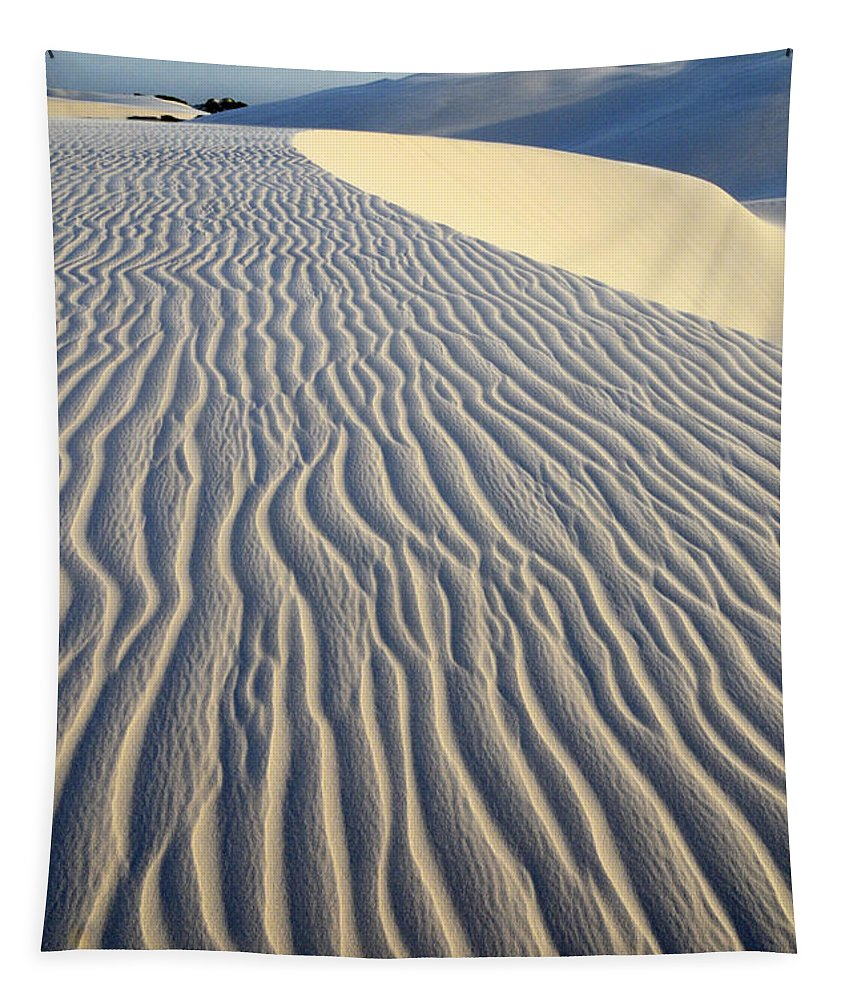 Sand Tapestry featuring the photograph Patterns In The Sand Brazil by Bob Christopher