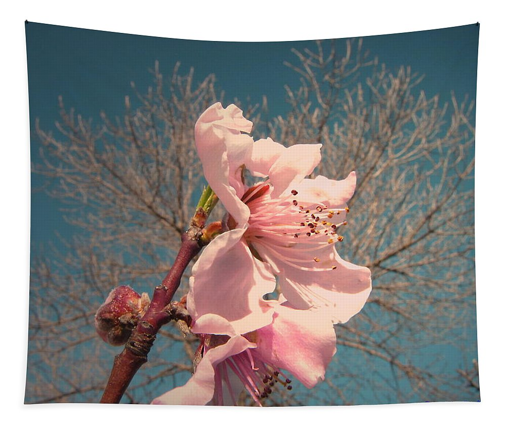 Peach Tapestry featuring the photograph Peach Blossom 2013 by Joyce Dickens