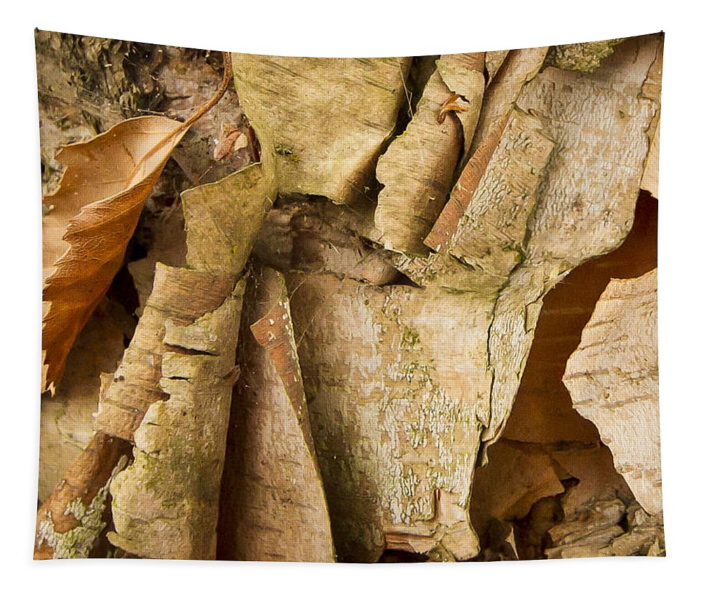 Bark Tapestry featuring the photograph Peeling by Jean Noren