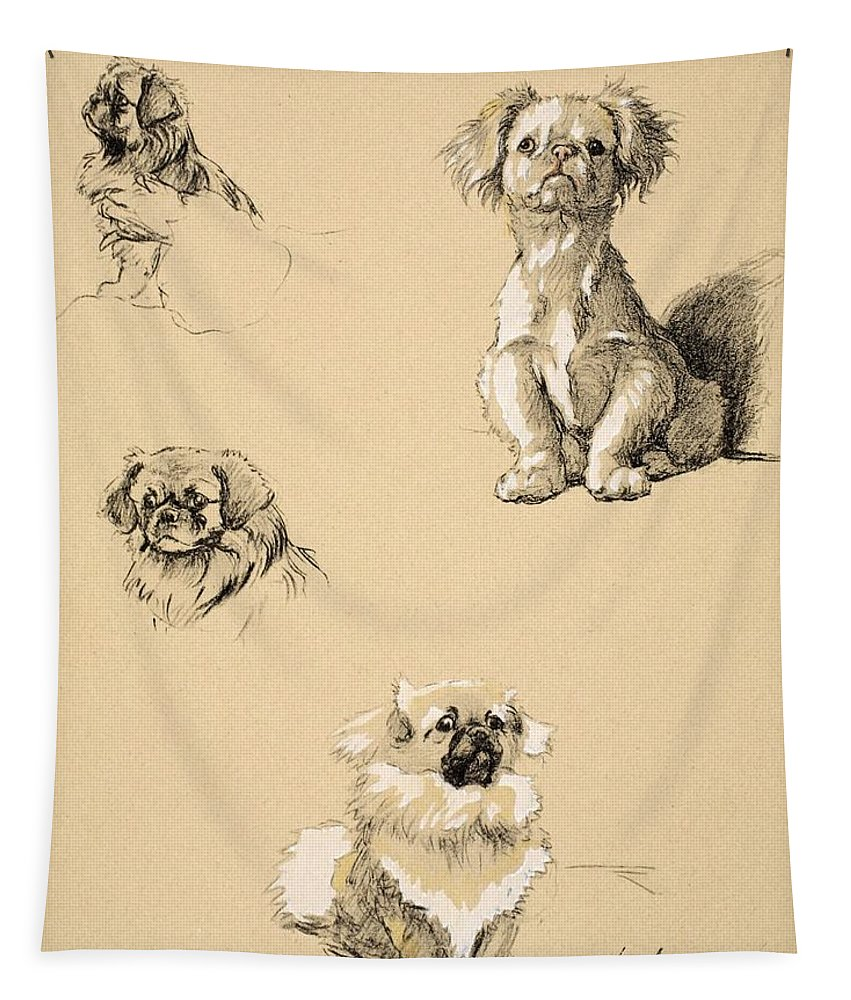 Pekingese Tapestry featuring the drawing Pekes, 1930, Illustrations by Cecil Charles Windsor Aldin