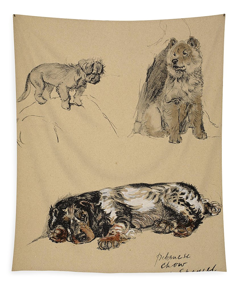 Dog Tapestry featuring the drawing Pekinese, Chow And Spaniel, 1930 by Cecil Charles Windsor Aldin