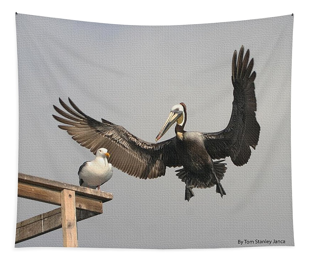 Pelican Wins Tapestry featuring the photograph Pelican Wins Sea Gull Looses by Tom Janca