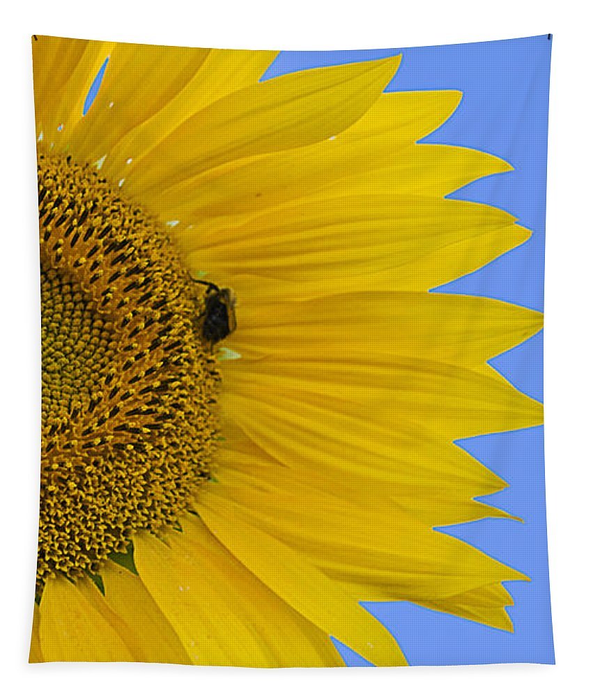 Sunflower Tapestry featuring the photograph Perfect Half With Blue Sky by Jatinkumar Thakkar