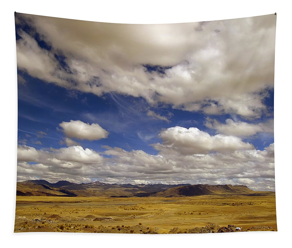 High Plain Tapestry featuring the photograph Peruvian High Plains by RicardMN Photography