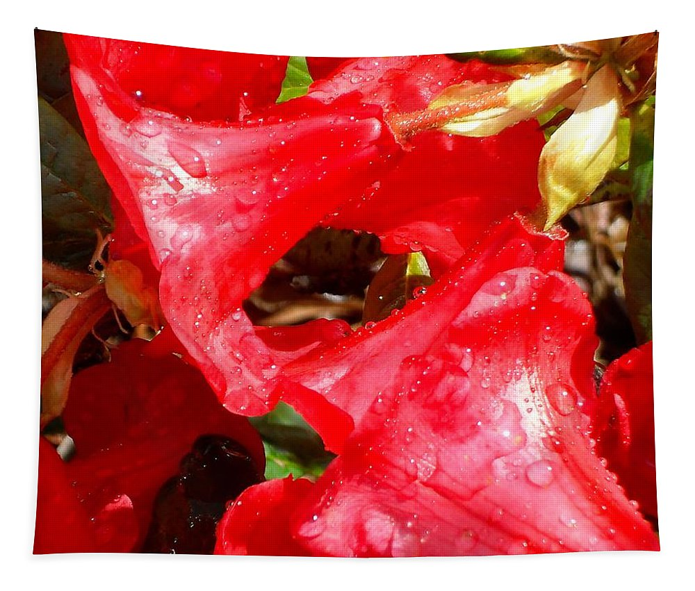 Photography Tapestry featuring the photograph Petal Fresh by Patrick J Murphy