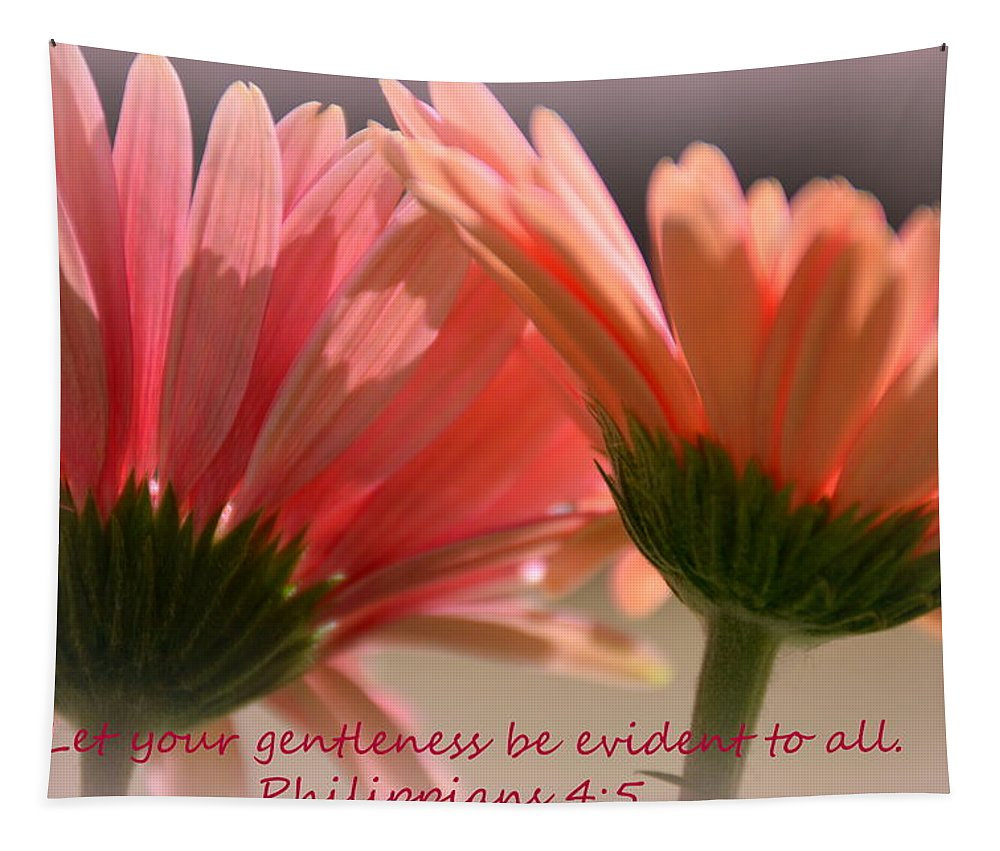 Philippians 4:5 Tapestry featuring the photograph Philippians 4 5 Gerber Daisies by Lisa Wooten