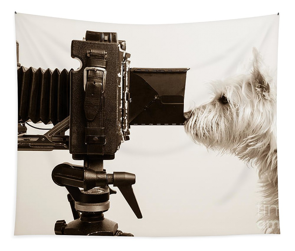 Westie Tapestry featuring the photograph Pho Dog Grapher by Edward Fielding