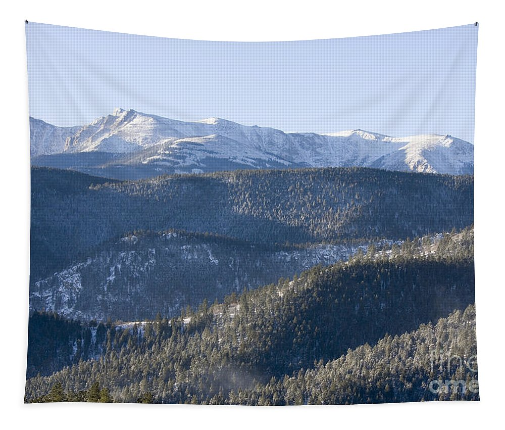 Beautiful Tapestry featuring the photograph Pike National Forest In Snow by Steve Krull