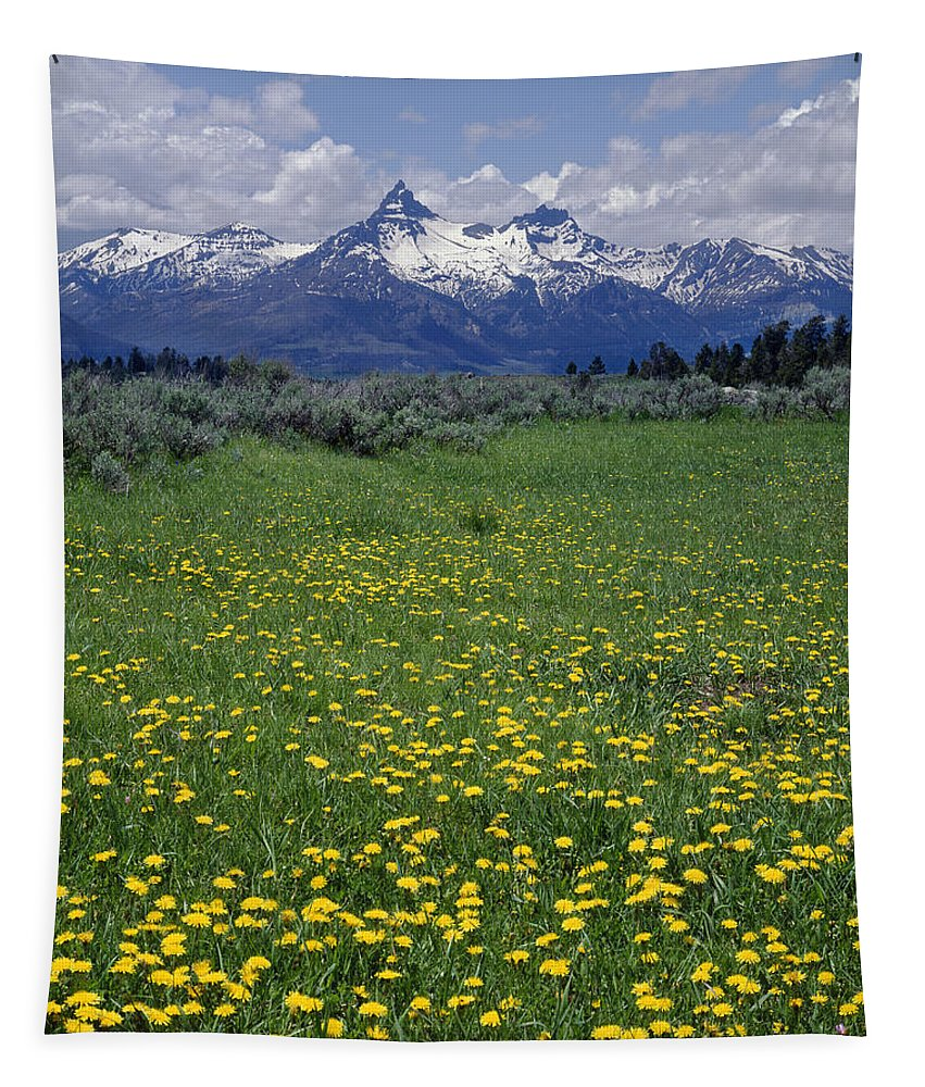 Pilot Peak Tapestry featuring the photograph 1a9210-pilot Peak And Wildflowers by Ed Cooper Photography