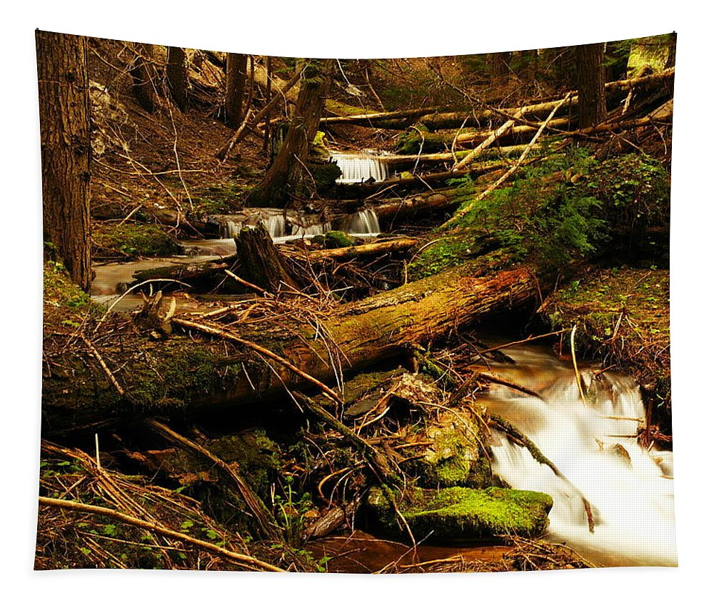 Idaho Tapestry featuring the photograph Placer Creek Near Wallace Idaho by Jeff Swan