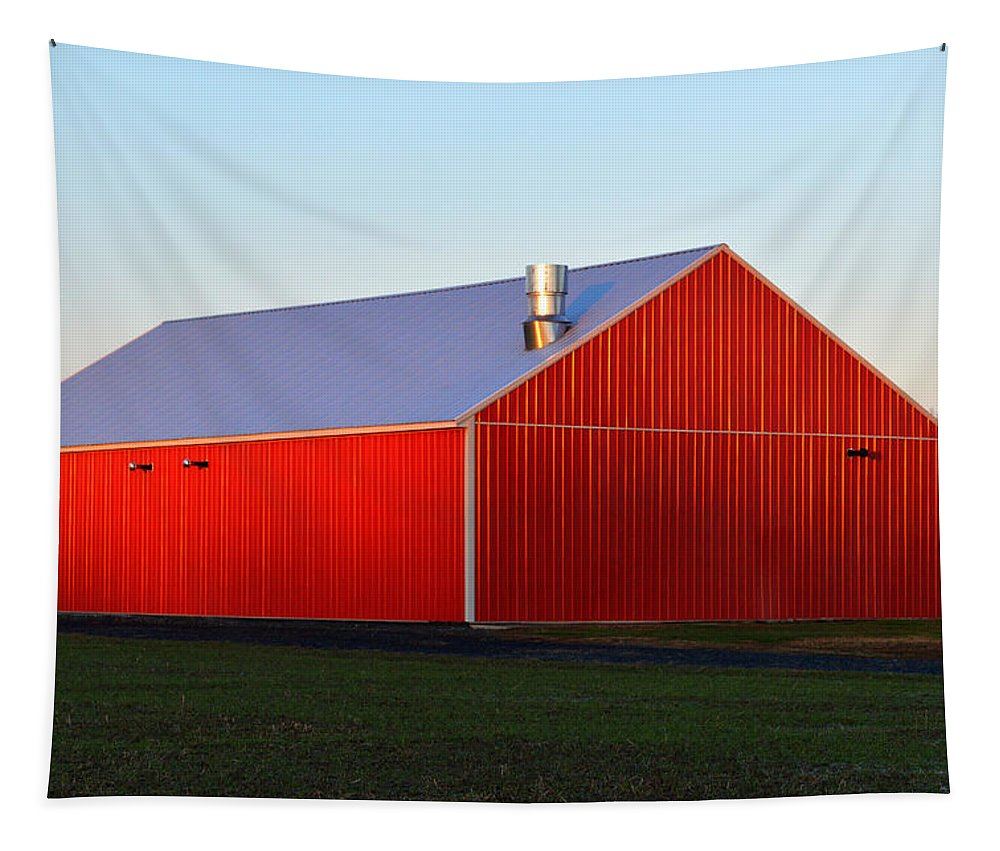 Red Barn Tapestry featuring the photograph Plain Jane Red Barn by Bill Swartwout Fine Art Photography